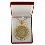 Медаль «Любимая бабушка, спасибо за теплоту и заботу»