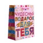 Пакет подарочный в ассортименте, 12 х15 см