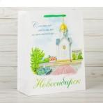 Пакет «Новосибирск», 18 х 23 х 8 см, бумага