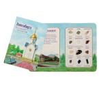 Коллекция камней на открытке «Новосибирск»